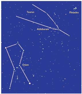 Stars of the winter sky