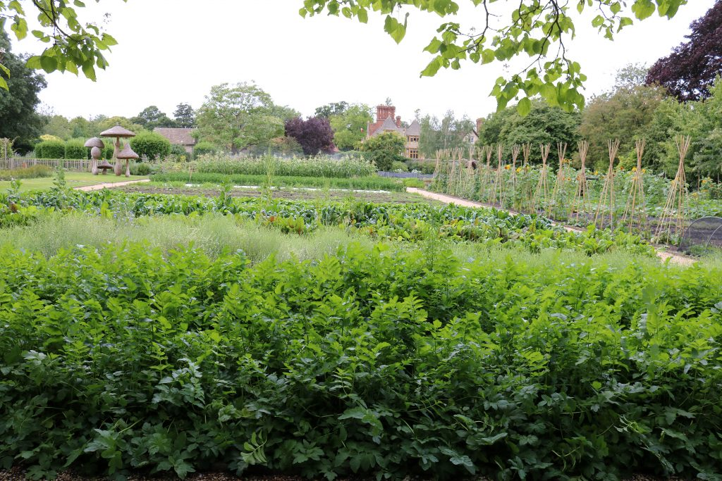 The vegetable garden with Le Manoir in the background